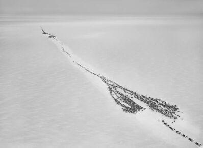 Sebastião Salgado, 'Nenets of the Siberian Arctic, Russia', 2011