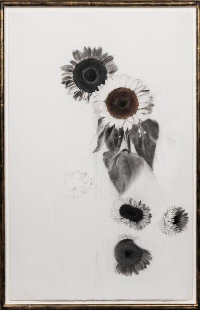 Linda Etcoff, 'Large Sunflower Study', ca. 2005