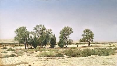 Natan Pernick, 'Israeli desert', 2017