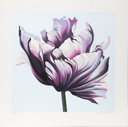 Lowell Nesbitt, 'Parrot Tulip III', 1980