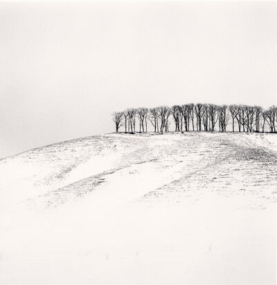 Michael Kenna, 'Hilltop Trees, Study 4, Teshikaga, Hokkaido, Japan', 2016