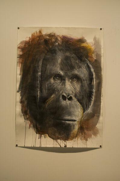 Russ Ronat, 'Orangutan', 2018