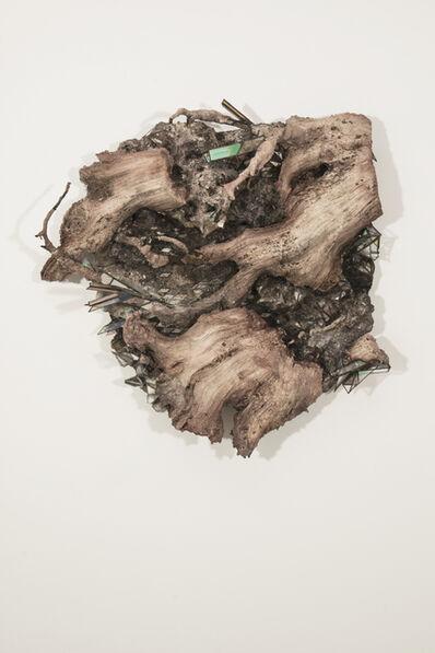 Monica Cook, 'Hanging Roots', 2018
