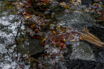Sarah Van Ouwerkerk, 'Red Leaf', 2013 The Ledges-PA