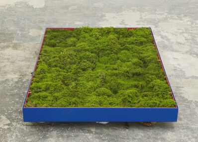 Andrea Büttner, 'Moss Garden', 2014