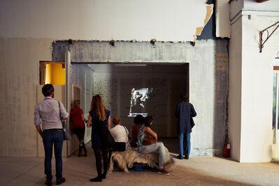 Maria Papadimitriou, 'AGRIMIKÁ (Installation view)', 2015