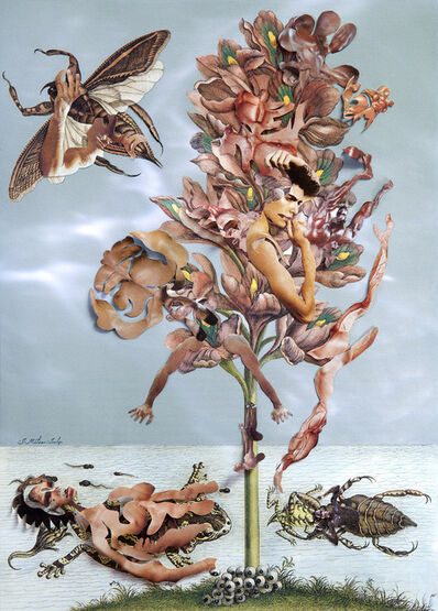 Dominique Paul, 'The Insects of Suriname #12', 2013