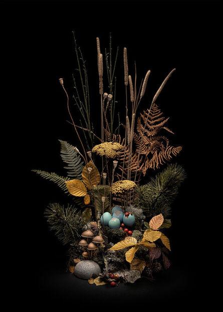 Jasper Goodall, 'Dark Flora #4, Autumn Weald ', 2019