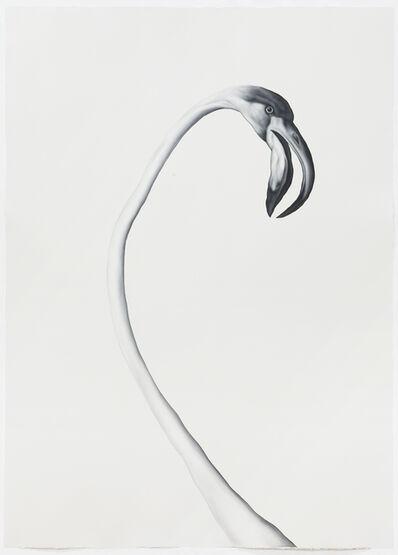 Shelley Reed, 'Flamingo (After Desportes)', 2020