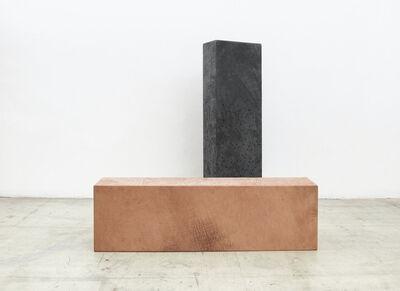 Anneliese Schrenk, 'Körper brünett/ Körper gepunktet', 2015