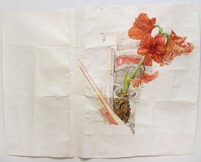 Dawn Clements, 'Amaryllis', 2012