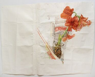 Dawn Clements, 'Amaryllis', 2012