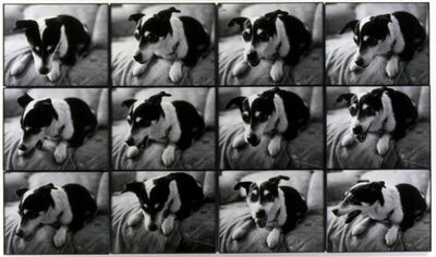 Jonathan Monk, 'My mother's dog gets nervous when I go home', 2002