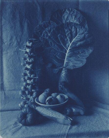 John Dugdale, 'The Fruits of Summer, Stone Ridge, NY', 1996