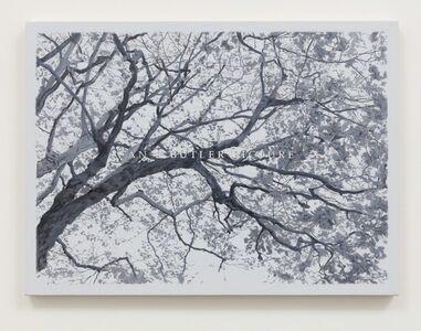 Luke Butler, 'An L Butler Picture VII', 2017