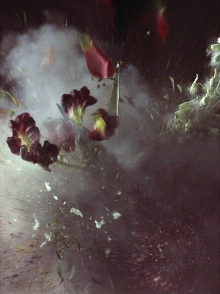 Ori Gersht, 'Time After Time, Untitled 27', 2006