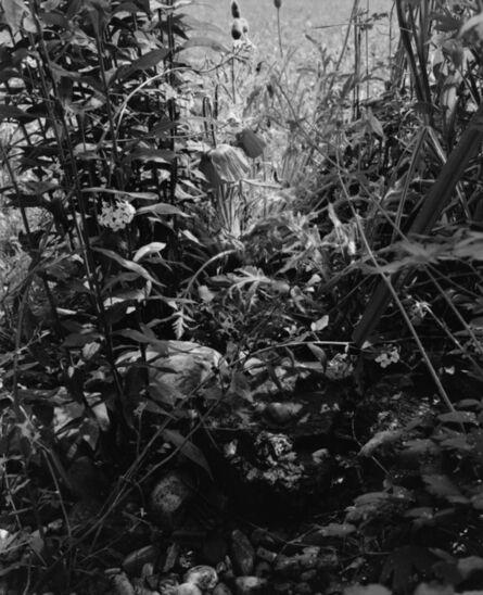Carola Vogt und Peter Boerboom, 'Gartenstück / Nr.1', 2016