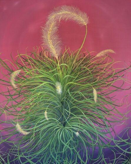 Allison Green, 'Fountain Grass', 2012