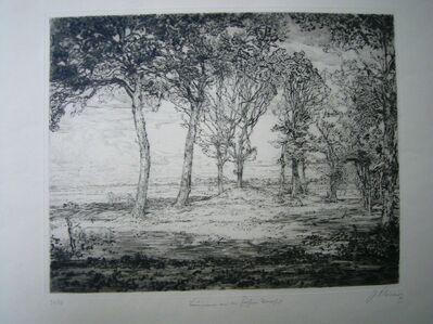 Johann Vincenz Cissarz, 'Bäume An Der Föhrer Marsch', 1911