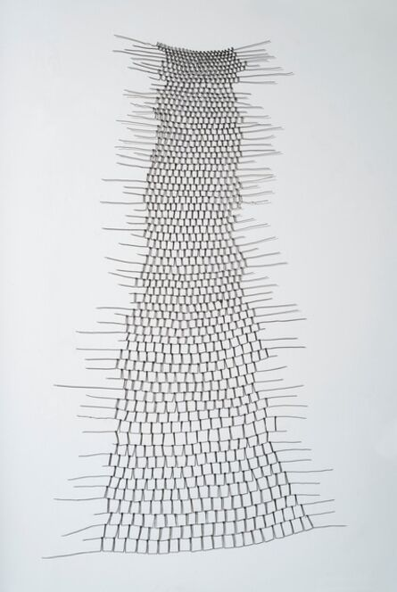 Emily Payne, 'Wire Shroud', 2016
