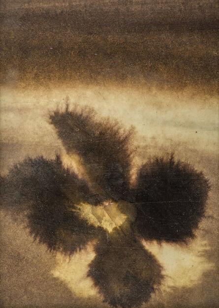 Ross Bleckner, 'Untitled', 1993