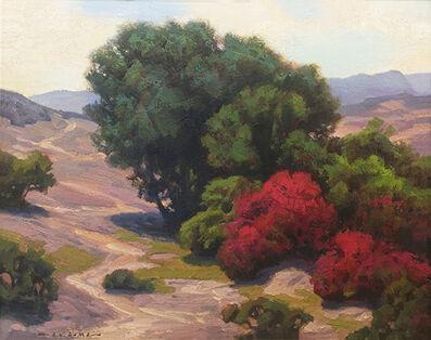 Jim Lamb, 'Bougainvillea & Oaks', 2018
