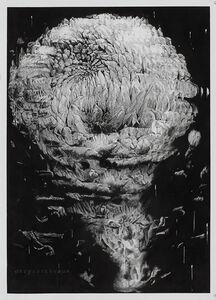 Alain Huck, 'Chrysantemum II', 2013