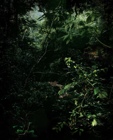 Caio Reisewitz, 'Paretinga', 2010