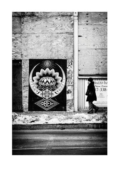 Jon Furlong, 'Cold Lotus', 2015