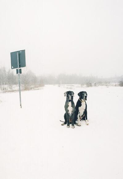 Jitka Hanzlová, 'Untitled (German Dogs)', 2009