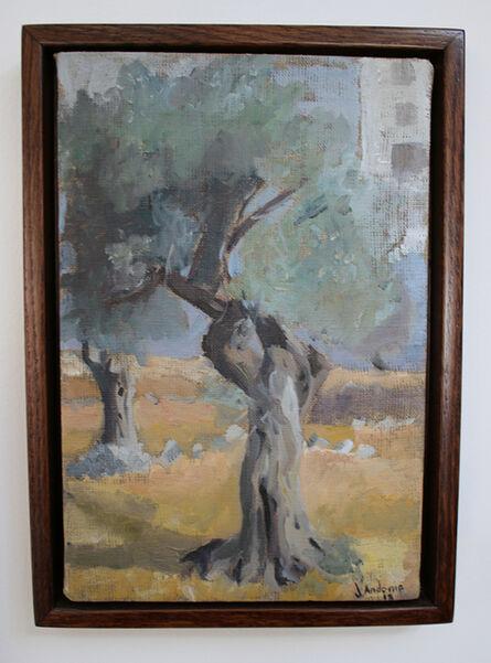 Johny Andonia, 'Olive Tree', 2015