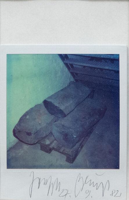 Joseph Beuys, '7000 oaks', 1982
