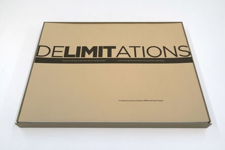 David Taylor (b. 1967), 'DeLIMITations Survey', 2016
