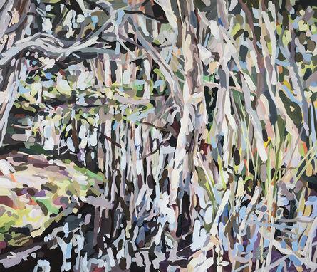 Oliver Watts, 'Paperbark Swamp (Centennial Park)', 2021