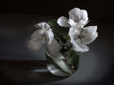 Pilar Pequeño, 'Flowers of quince (Edition 15 copies) '