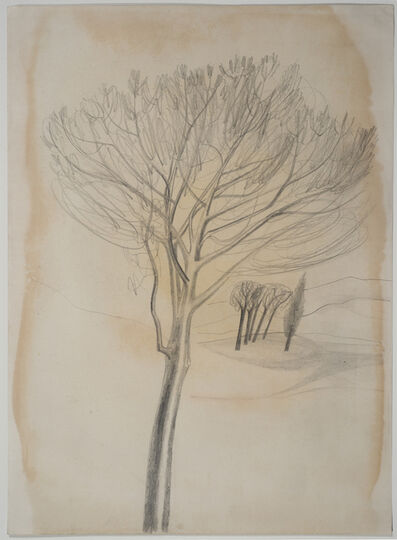 Ben Nicholson, 'Trees, Tuscany', 1955