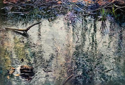 David T. Kessler, 'Pond Calligraphy', 2019