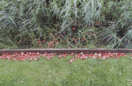 Marijke van Warmerdam, 'In and Out', 2007