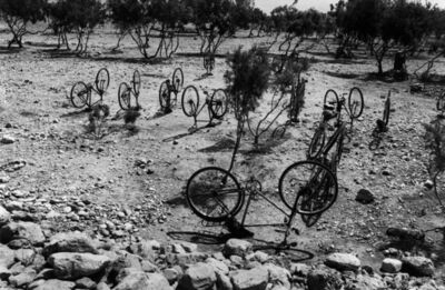 Micha Bar-Am, 'bicycles in the desert', 1978