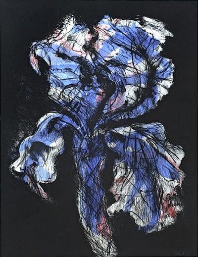 William Kentridge, 'Black Iris', 1993-1998