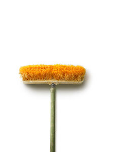 Chuck Ramirez, 'Brooms: Orange Pushbroom', 2007-2011