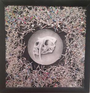 Joseph Grazi, 'Saber Tooth', 2013
