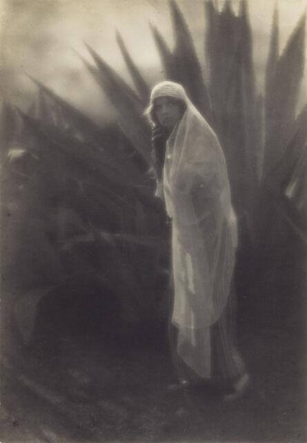 Edward Weston, 'Maud Allan with Century Plant', 1916