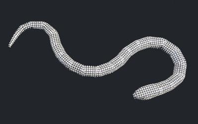Nicola Bolla, 'Senza Titolo - Serpente (Untitled - Snake)', 2009
