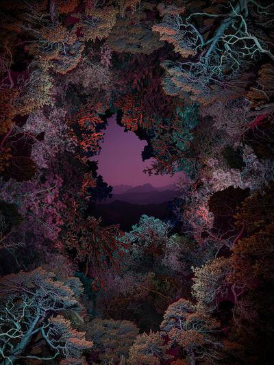 Linda Westin, 'Illuminated Dendrology - Dimensional Forest', 2020