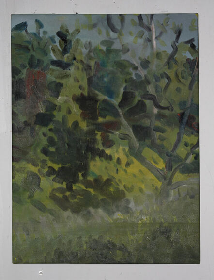 Daniel Heidkamp, 'First Forest', 2013