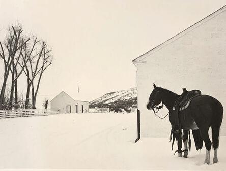 Kurt Markus, 'YP Ranch Tuscarora, NV', 1981
