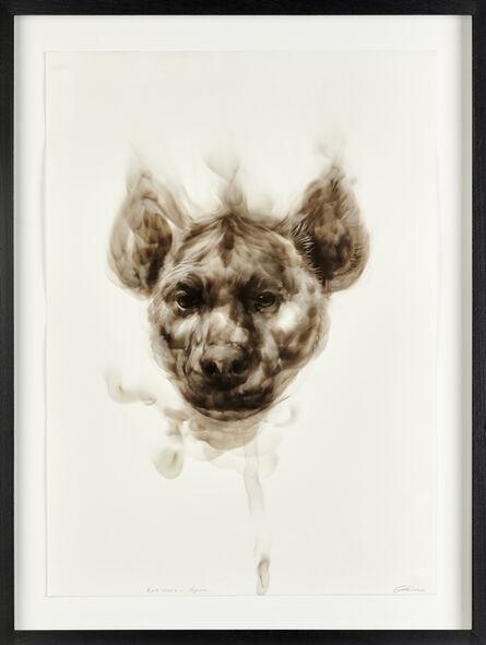 Diane Victor, 'Bad Word – Hyena', 2017