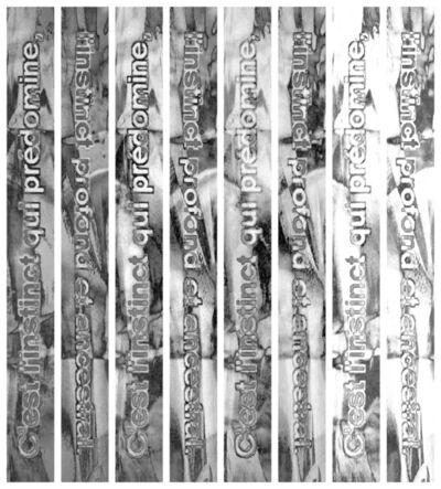 Anne-Charlotte Yver, 'Instinct (strates)', 2015