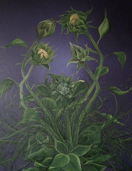 Allison Green, 'Creation', 2013